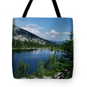 View At Roman Nose Peak Tote Bag