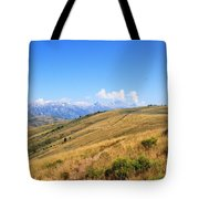 View From A Horse Tote Bag