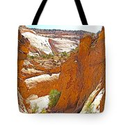 View From Above Capitol Gorge Pioneer Trail In Capitol Reef National Park-utah Tote Bag