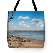 View From Big Talbot Island Beach Tote Bag