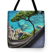 View From Capri.italy Tote Bag