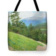 View From Deer Mountain Tote Bag