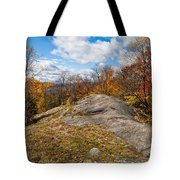 View From Eagle Cliff - Eagle Bay Ny Tote Bag