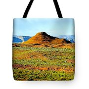 View From Horseshoe Bend Overlook Tote Bag