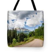 View From Kebler Pass Tote Bag
