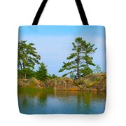 View From Killarney Mountain Lodge Tote Bag