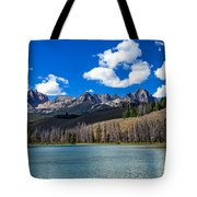 View From Little Redfish Lake Tote Bag