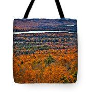 View From Mccauley Mountain Tote Bag