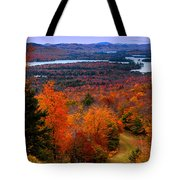 View From Mccauley Mountain II Tote Bag
