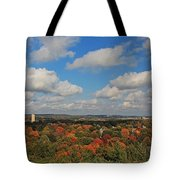 View From Mt Auburn Cemetery Tower Tote Bag