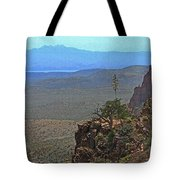 View From Parker Creek Canyon Tote Bag