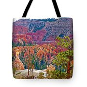 View From Queen's Garden Trail In Bryce Canyon National Park-utah Tote Bag