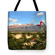 View From Roadrunner Tote Bag