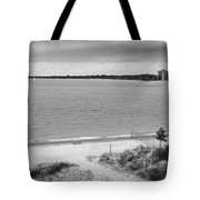 View From The Fort Gratiot Light House Tote Bag