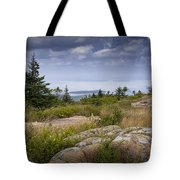 View From Top Of Cadilac Mountain In Acadia National Park Tote Bag