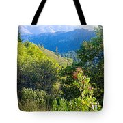 View From Trail To West Point Inn On Mount Tamalpais-california  Tote Bag