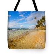 View Of Caribbean Coastline Tote Bag