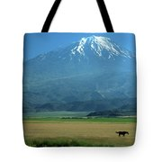 View Of Mount Ararat In Turkey Tote Bag