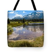 View Of Mount Tallac From Taylor Creek Beach Lake Tahoe Tote Bag