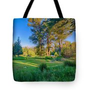 View Of Mt Gardner From Cottonwood Cottage Tote Bag