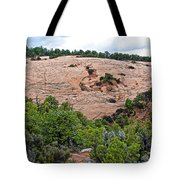 View Of Rock Dome Surface From Sandal Trail Across The Canyon In Navajo National Monument-arizona Tote Bag
