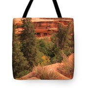 View Of The Cliffs From The Cliff Tote Bag
