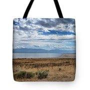 View Of Wasatch Range From Antelope Island Tote Bag