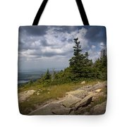 View On Top Of Cadilac Mountain In Acadia National Park Tote Bag