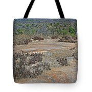 View One From Matekenyane In Kruger National Park-south Africa Tote Bag