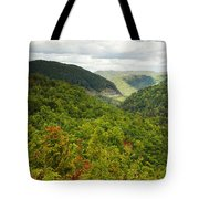 View To The Valley Tote Bag