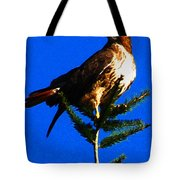 Vigilant Hawk Tote Bag