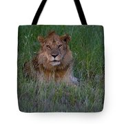Vigilant Lion Tote Bag