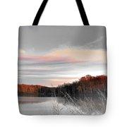 Village Creek Ar Morning Tote Bag
