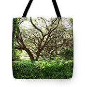 Vines And Oaks Tote Bag