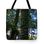 Vines In The Swamp Tote Bag