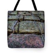 Vines On Stonework Tote Bag