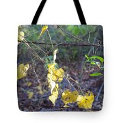 Vines On The Fence Tote Bag