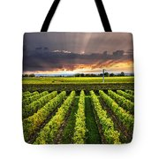 Vineyard At Sunset Tote Bag