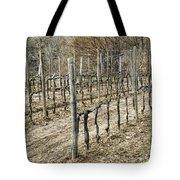 Vineyard In Early Spring Tote Bag