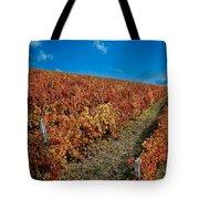 Vineyard In Negotin. Serbia Tote Bag