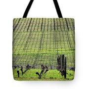 Vineyard Lines 23036 Tote Bag