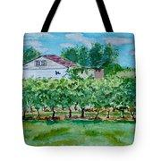 Vineyard Of Ontario 2 Tote Bag