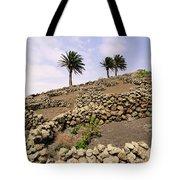 Vineyard On Lanzarote Tote Bag