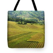 Vineyards Below Zellenberg France 1 Tote Bag