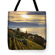 Vineyards Saint-saphorin, Lavaux Tote Bag