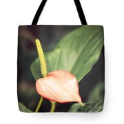 Vintage Anthurium Tote Bag