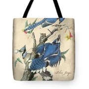 Vintage Bird Study-f Tote Bag