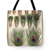 Vintage Feather Study-jp2084 Tote Bag