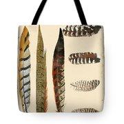 Vintage Feather Study-jp2085 Tote Bag