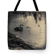 Vintage Views II - Swans And Cygnets Tote Bag by Chris Armytage